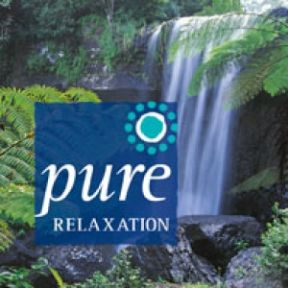 Pure Relaxation - Llewellyn